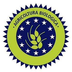 10 proprietà benefiche della pasta biologica