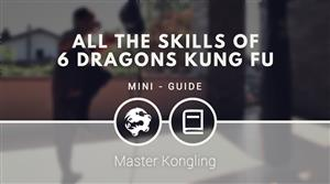 All the skills of 6 Dragons Kung Fu