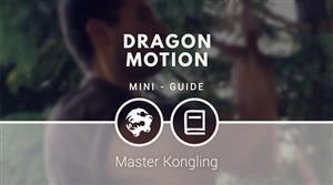 Dragon Motion [MINI-GUIDE]