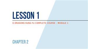 Lesson 1 - Basics: 6 Dragons Kung Fu