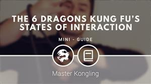 The 6 Dragons Kung Fu's states of interaction