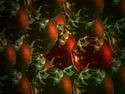 CLICK PER INGRANDIRE | TITOLO: Concentrato di sfere