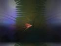 CLICK PER INGRANDIRE | TITOLO: Fenice luminosa