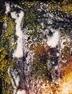 CLICK PER INGRANDIRE | TITOLO: corallo_di_coccodrillo