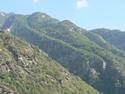 CLICK PER INGRANDIRE   TITOLO: Montagne verdi