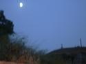 CLICK PER INGRANDIRE   TITOLO: Luna