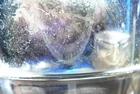 CLICK PER INGRANDIRE | TITOLO: Maschere e vetro