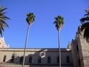 CLICK PER INGRANDIRE   TITOLO: Palme e castello