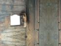 CLICK PER INGRANDIRE | TITOLO: Parete legno finestra infinito
