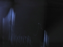 CLICK PER INGRANDIRE | TITOLO: Salti di un inverno senza luce