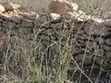 CLICK PER INGRANDIRE | TITOLO: Vecchio muretto in sasso